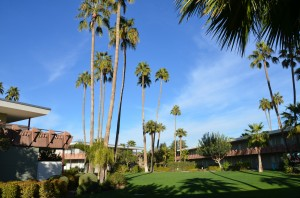 grounds 300x198 Hotel Valley Ho, Scottsdale, Arizona