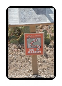 Sign Warning About Rattlesnakes 217x300 The Arizona Sonora Desert Museum in Tucson