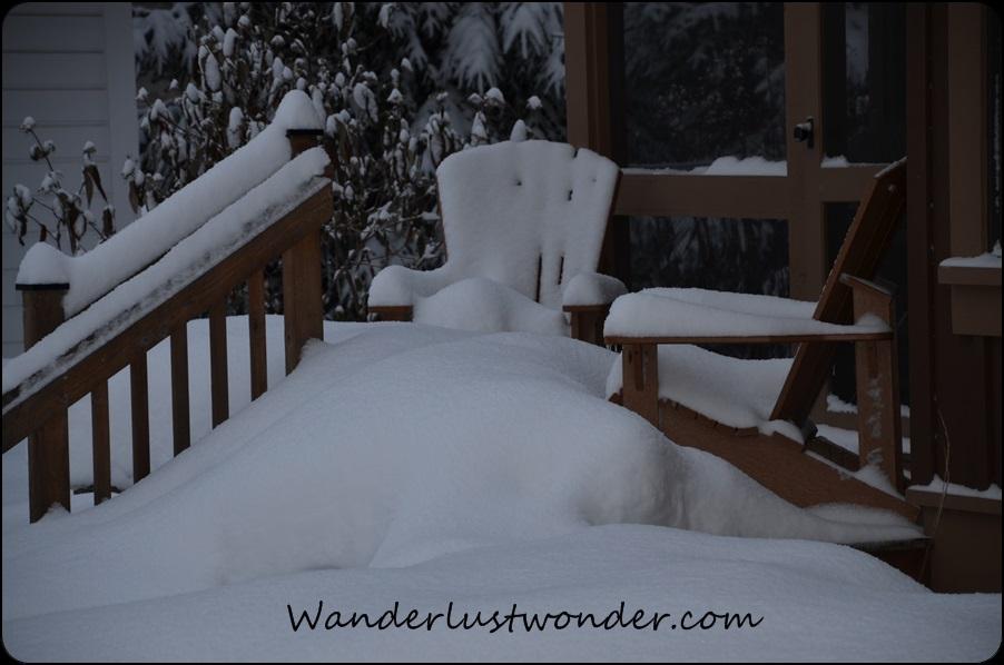 Our snow covered deck chairs.