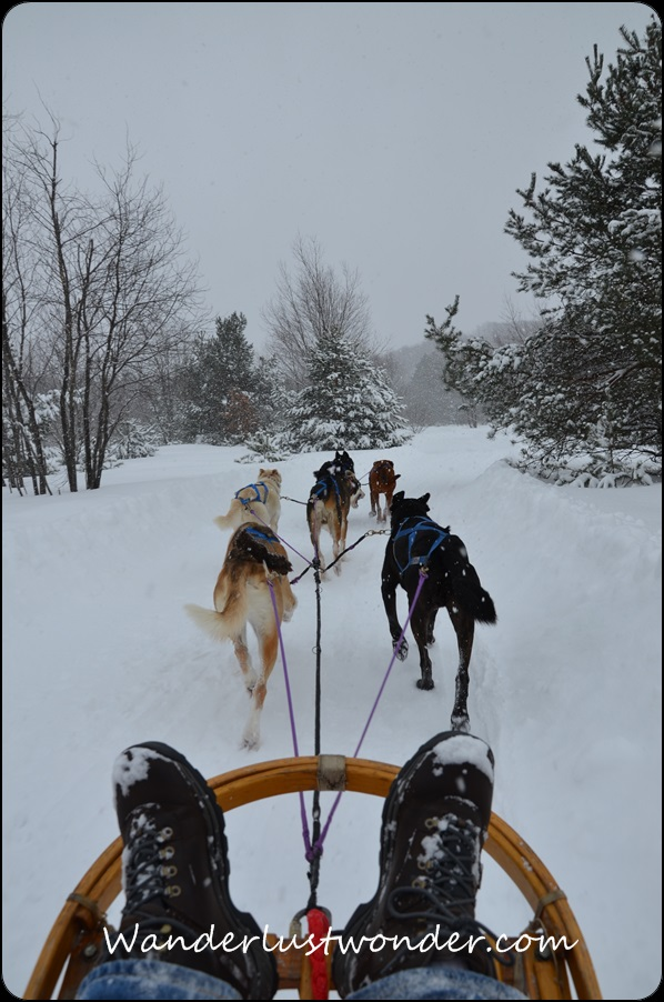 boots in dog sled