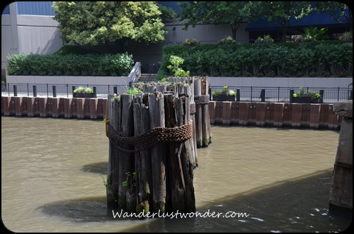 Pilings in the river.