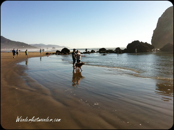 Bring your dog to Cannon Beach!