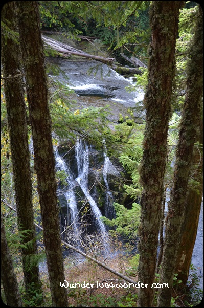 The Lower Lewis River Falls.