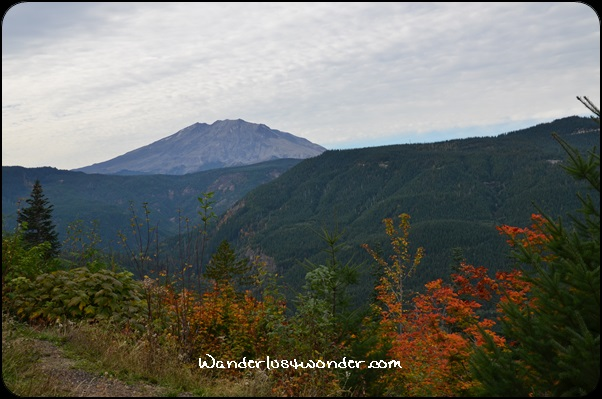 Mt. St. Helens on a gorgeous fall day.