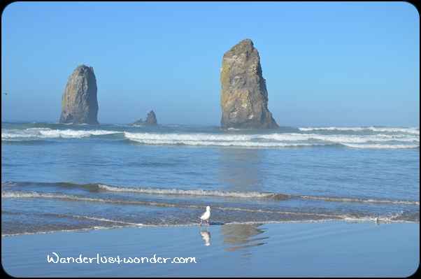 The Needles in Cannon Beach