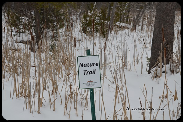 Welcome to the Nature Trail!
