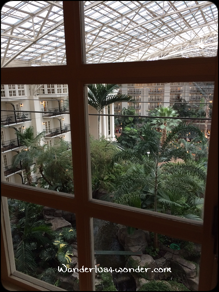 View of the atrium area from our window.