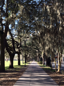 October - Relax in the Hostess City of the South Savannah Georgia - Jan Ross1